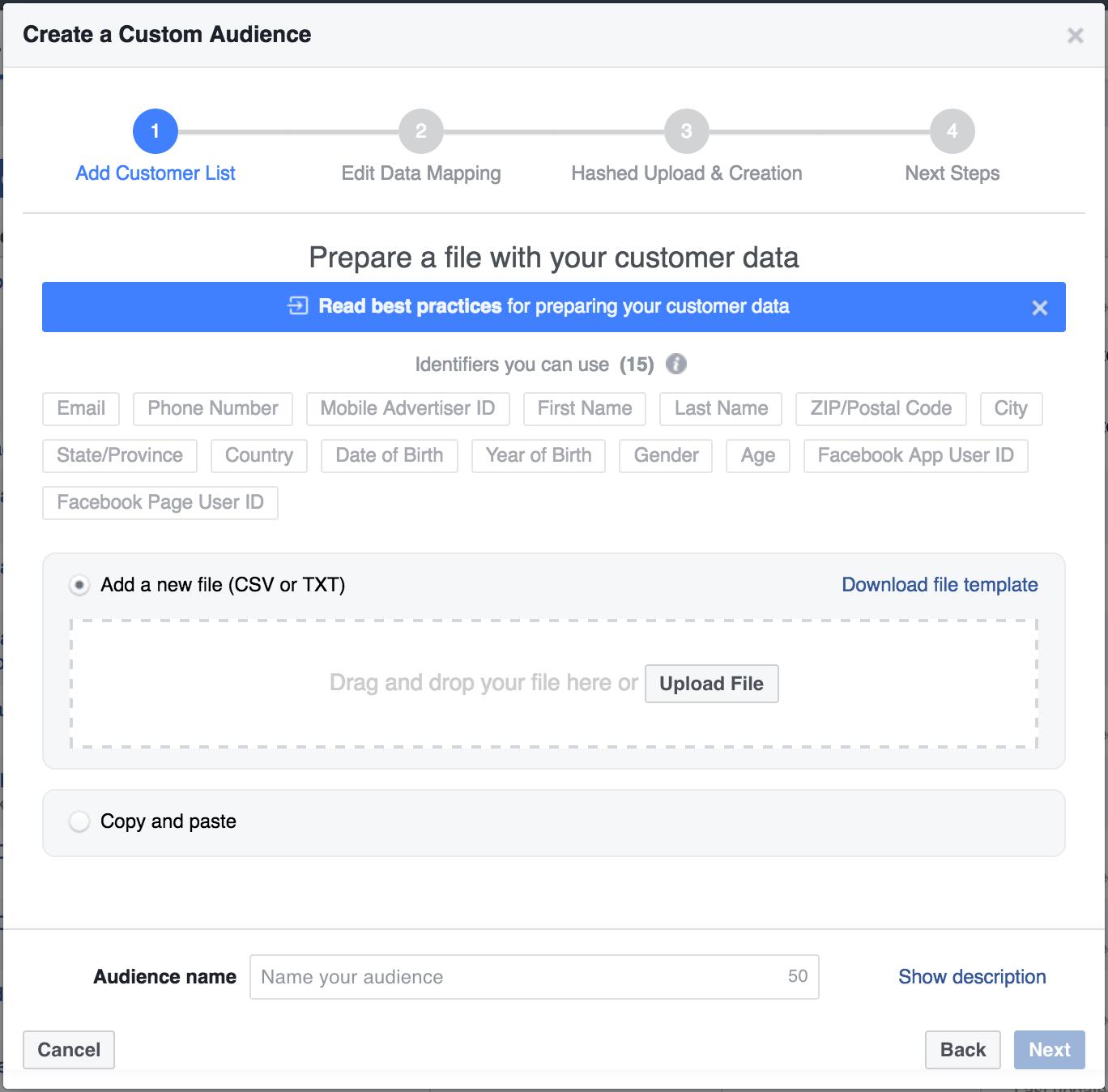 Custom Audience in Facebook