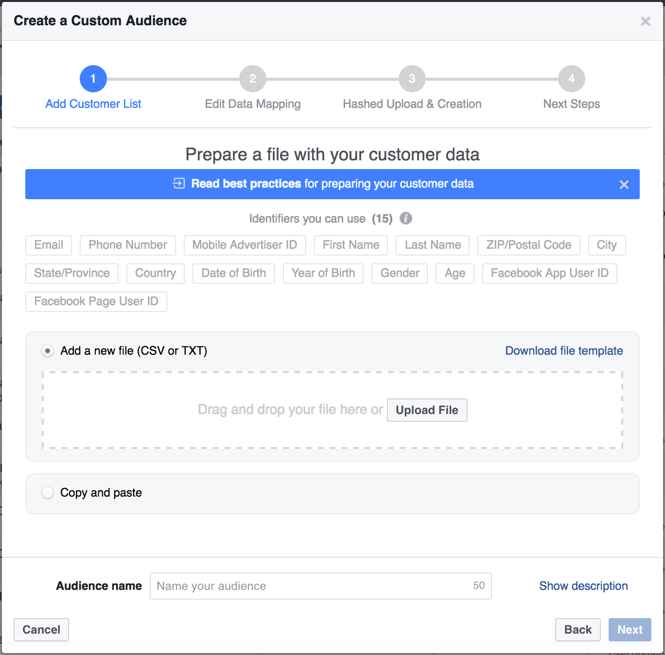 Custom Audience in Facebook